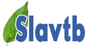 Adblue_slavtehbiznes_logo